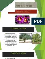 Monografia.docxciencia y Ambiente