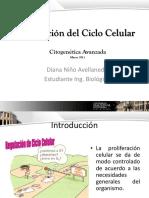 Regulación Ciclo Celular.pptx