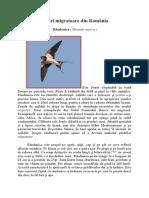 Păsări Migratoare Din România