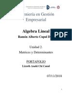 Portafolio Lizzeth Chi Algebra