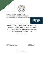 Disertacija