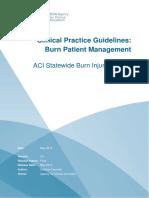 Burn_Patient_Management_-_Clinical_Practice_Guidelines.pdf