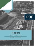 Raport_Ruslan Codreanu_12 luni.pdf