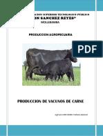 PRODUCCIÓN DE VACUNOS DE CARNE.docx