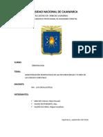 Informe 4 Dendro Inflorescencia