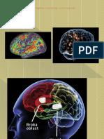 Dijagnostika i Tretman Afazija 2