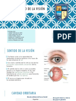 Vision Presentacion Final
