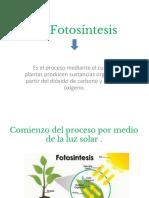 Copia de La Fotosíntesis- poweer.pdf