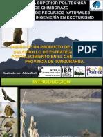 111001264 Tesis Producto Aviturismo