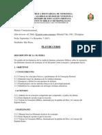 PLAN DE CURSO CONSEJERIA 2017.docx