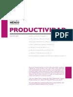 201508_mexicoproductivity.pdf
