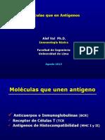 Moléculas Que en Antígenos