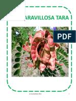 La Maravillosa Tara (1)