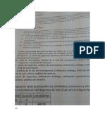 examen-4 (1).docx