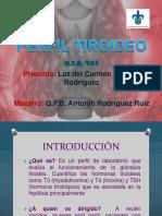 perfiltiroideo-120930183139-phpapp01 (1).pdf