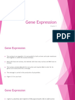 Chapter 3 - Gene Expression Cont.