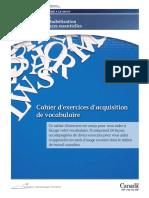 cahier_vocabulaire (1).pdf