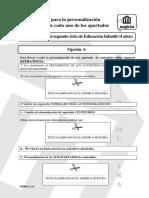 magister_muestra_orientinfantil2011.pdf