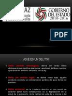 DELITOS AMBIENTALES EN MATERIA MINERA - MX