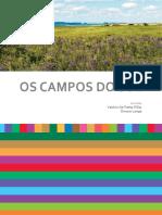 Campos_do_Sul.pdf