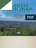 Plantas medicinais do Bioma Pampa
