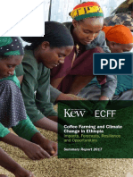 Coffee Farming and Climate Change in Ethiopia