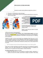 64 Embriolog+¡a del Sistema Endocrino