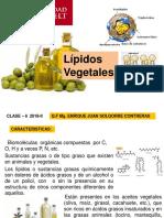 Clase 6. Lipidos. 2018-II - A