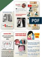 245611116-Leaflet-TBC.pdf