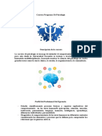 Carrera Programa de Psicologia- Informacion Planificacion-1