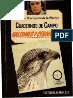 Cuadernos de Campo 19 F R de La Fuente Halcones y Cernícalos-Editorial Marín S.a. (1978)