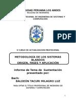 Trabajo de sustentación de la Metodología de Sistemas Blandos