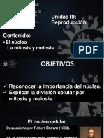 M7 Nucleo Mitosis y Meiosis