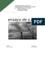 CONTAMINACIÓN DEL AIRE (Ensayo).doc