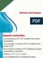 14 Espacios vectoriales.pptx