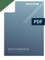 Practica Individual f.d.