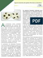 Patologia de Sementes Florestais
