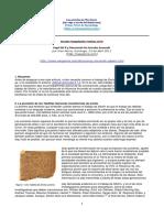13-Discutiendo-los-Documentos-Anunnaki.pdf
