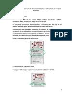 2_ManualUsuario_RegistroPJ_SUNARP.pdf