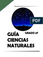 Guía grado 6 ciencias naturales.pdf
