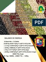 Diapositivas Balanbce de Energia