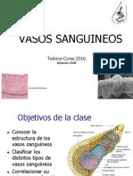 07-teorico-vasos-sanguineos-2016.pdf