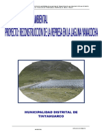 EIA_PRESA_YANAC_06-06-11.docx
