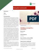 Clamydia Trachomatis 2017