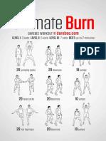 Burn Workout