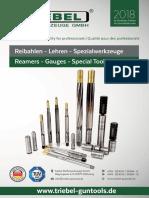 Triebel Guntools Katalog Patronenlagerreibahlen Und Lehren