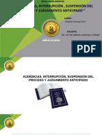 15.- LAS AUDIENCIAS, INTERRUPCIÓN.pptx