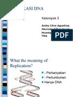 Pengaturan Ekspresi Gen Pada Prokariotik