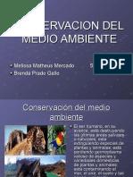 Comservacion Del Medio Ambiente222
