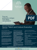 RMM-0044 Flash Opportunity - Senior Talent and Culture Executive
